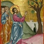 Проклятие смоковницы. Книжная миниатюра из арабского Евангелия XVII в