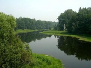 800px-Polya_river_near_Krivandino