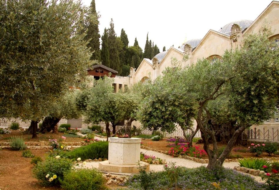 некоторым гефсиманский сад иерусалим фото хакасская