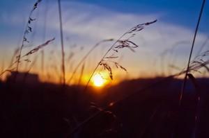 800px-Захід_сонця_в_Полтаві