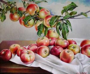 ветка яблони-1