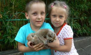 Реабилитация для двойняшек Феди и Сони Фёдоровых
