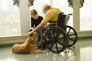 Инвалидные кресла для прогулок