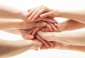Как помочь сразу всем подопечным фонда «Предание»