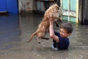 Помощь пострадавшим от наводнения в Забайкалье