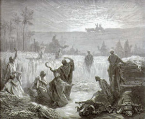 Загадка города Вефсамиса